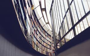 Vue vers le plafond d'une bbiliothèque où des fenêtres font face à une rangée de livres, tout en courbes.