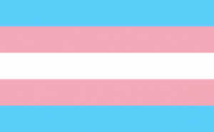 drapeau transgenre