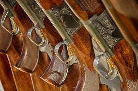 gros plan sur une rangée de fusils