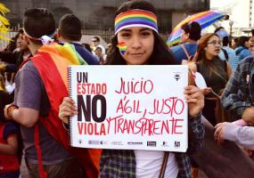 """Une jeune femme tient une pancarte où on y lit """"Un estrado no viola. Juicio agil, Justo y transparente"""""""