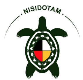 Logo de Nisidotam.