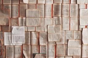 Photographie d'une surface remplie de livres ouverts.