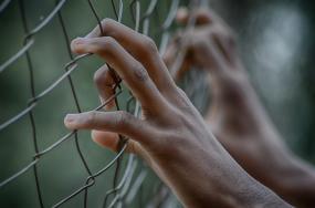 Gros plan sur des mains qui agrippent une clôture.