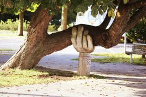 Photographie d'un oeuvre d'art urbain. Une main en bois soutient une grosse branche d'arbre.